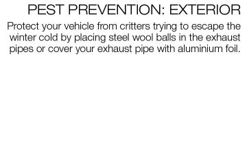 Brief paragraph about placing wool ball in exhaust pipe to prevent critters from entering the tailpipe while the vehicle is stored for the winter.